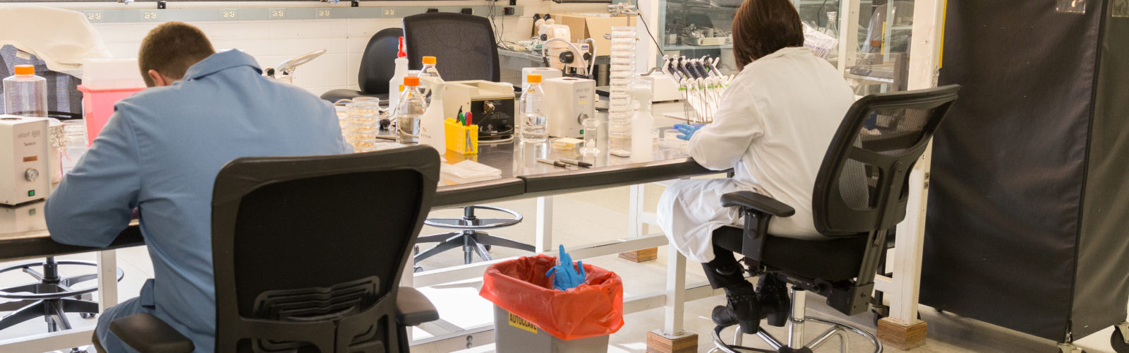 Two plant researchers working in a lab